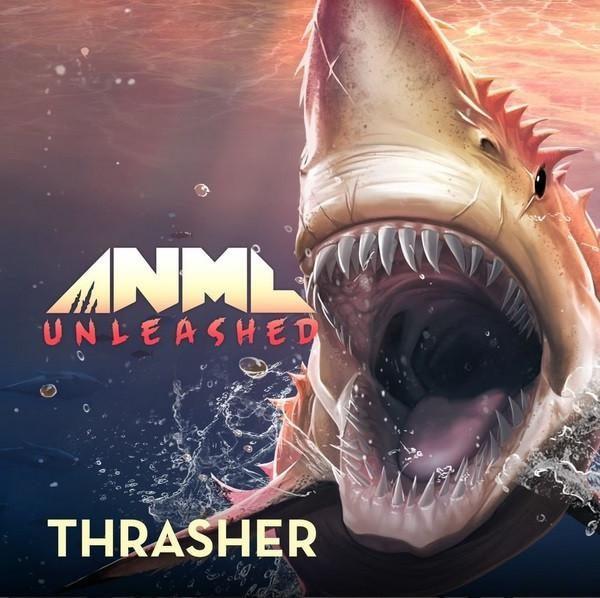 ANML Thrasher kopen
